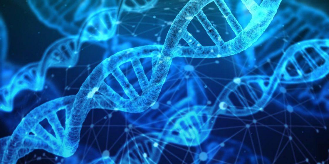 The DNA of Serial AI Entrepreneurs