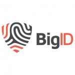 bigid-4.png