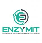 enzymit