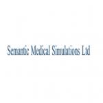 semanticmedicalsimulations-4.png
